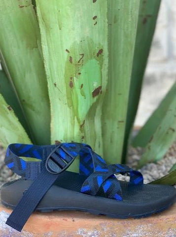 Men's Classic Z1 Chaco Sandal single black and blue strap - J106163