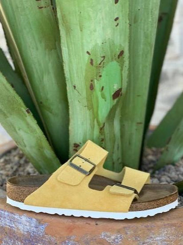 Birkenstock Women's Arizona Soft Footbed Mellow Yellow Sueded - 101588