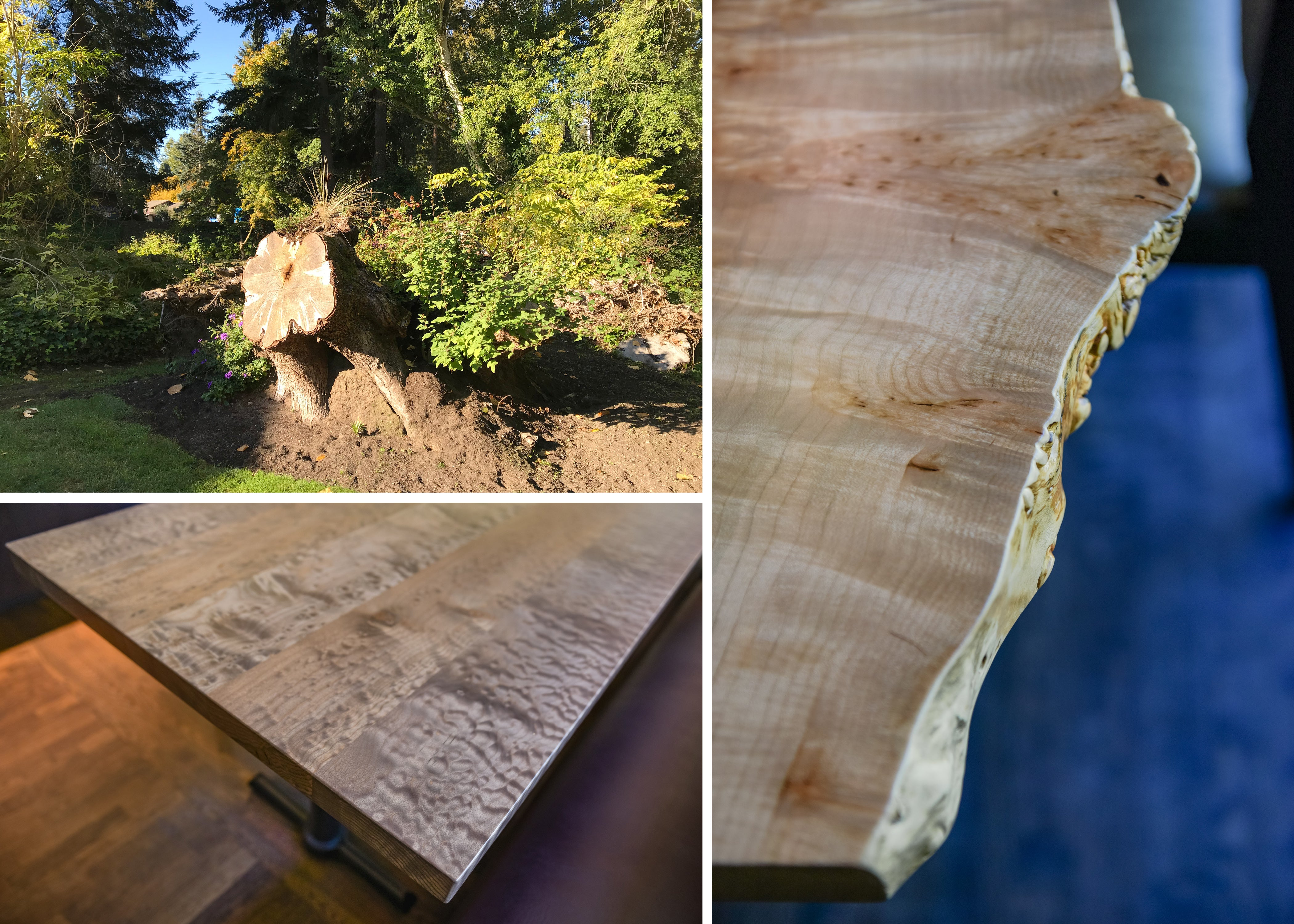 Site salvage reuse maple tree to table