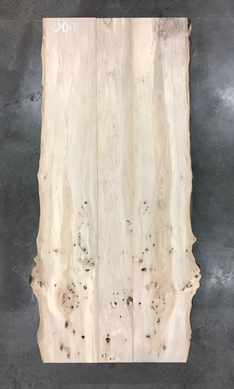 "0011 - Rock Elm - 96""L x 46""W - Meyer Wells"
