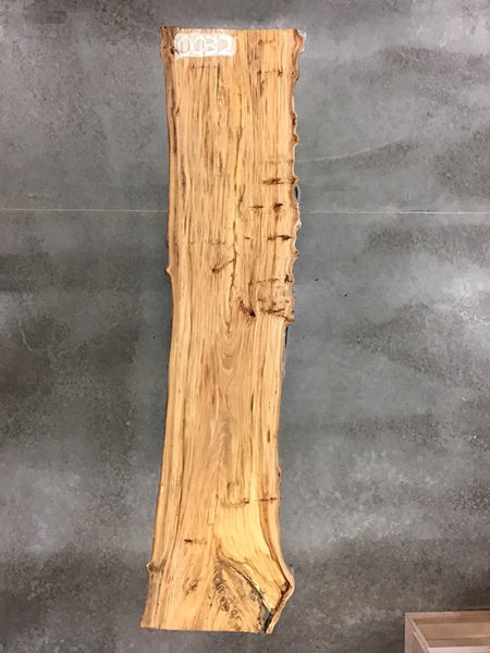 "0032 - Rock Elm - 114""L x 27""W - Meyer Wells"
