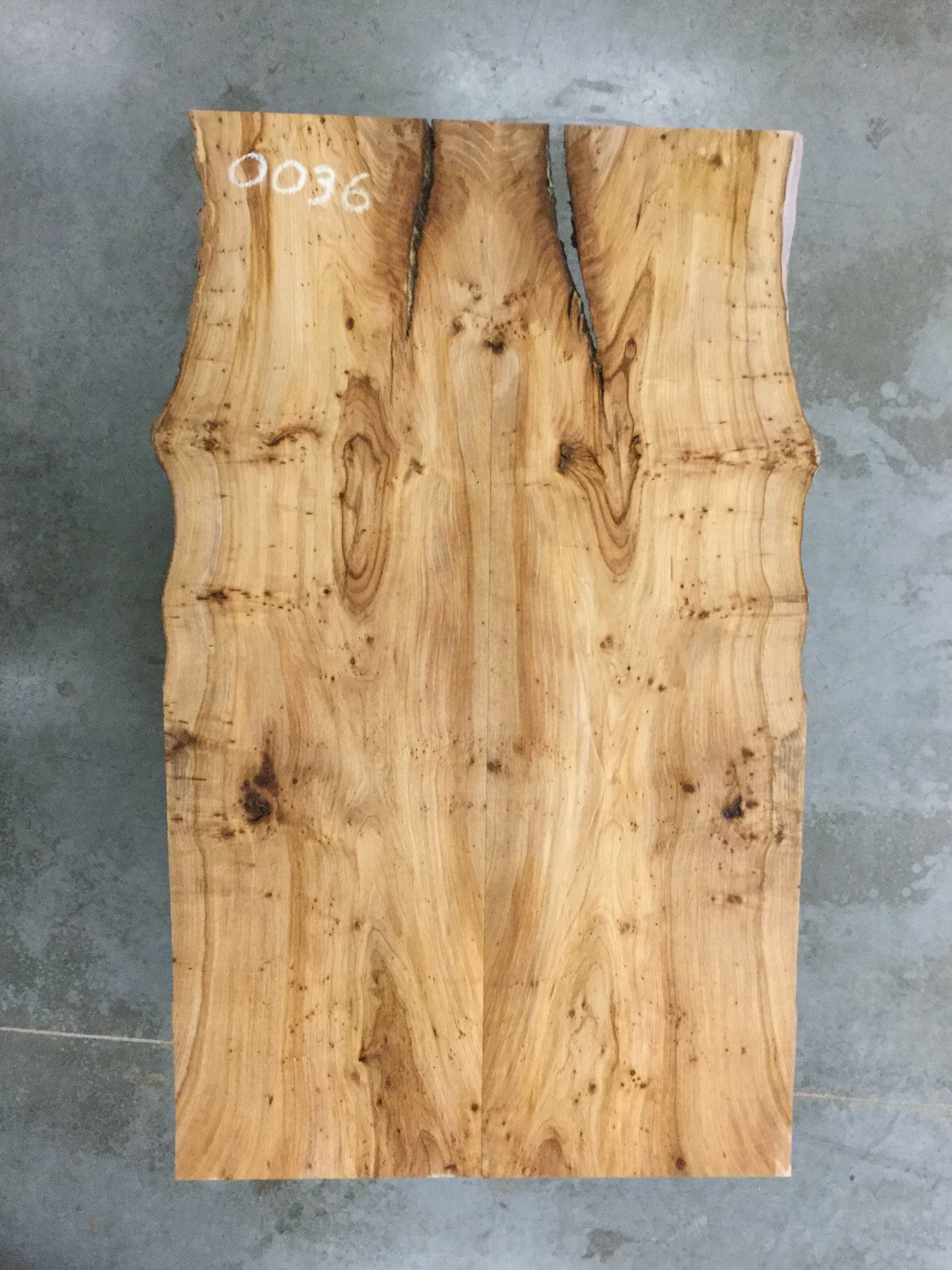 "0036 - Rock Elm - 78""L x 48""W - Meyer Wells"