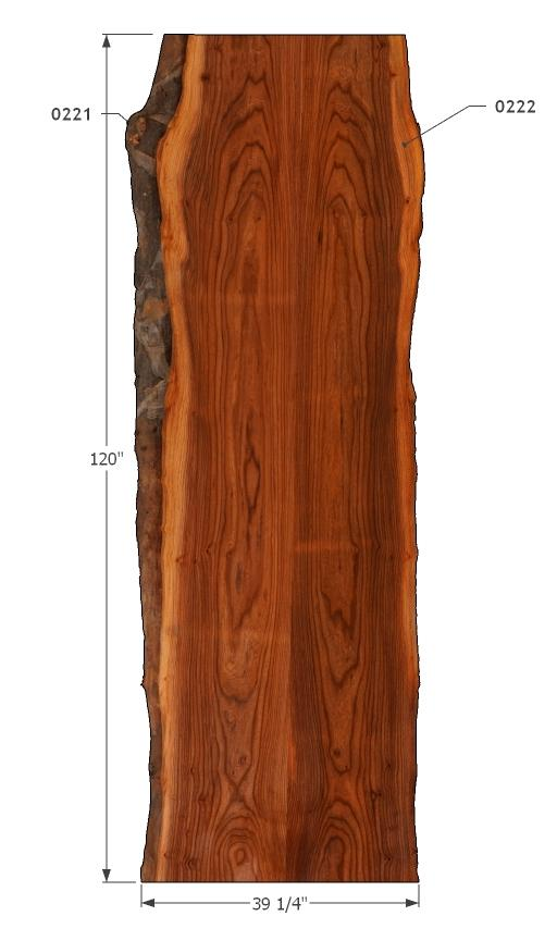 "0221222 - Red Elm - 120""L x 39""W - Meyer Wells"
