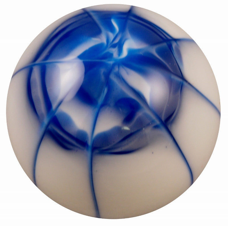 Splash White With Blue Shift Knob