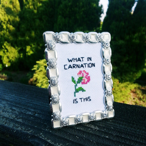 What In Carnation - FINISHED and FRAMED Stitchery