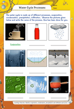 Load image into Gallery viewer, Edurite Class 6 Science Worksheets