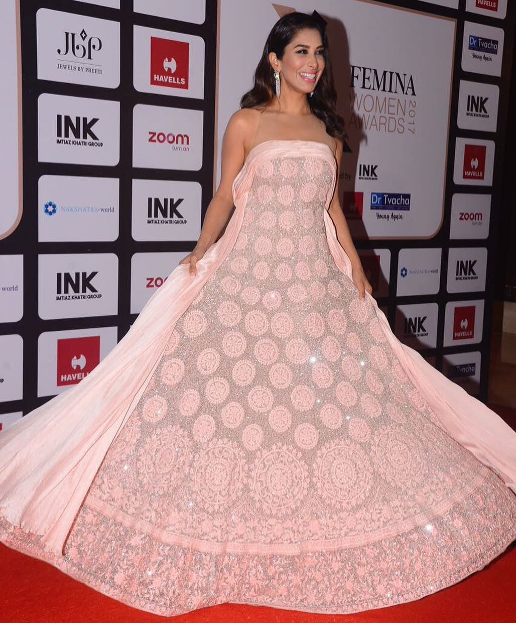 Sophie Choudry Looked Attractive In Manish Malhotra's Designer Gown