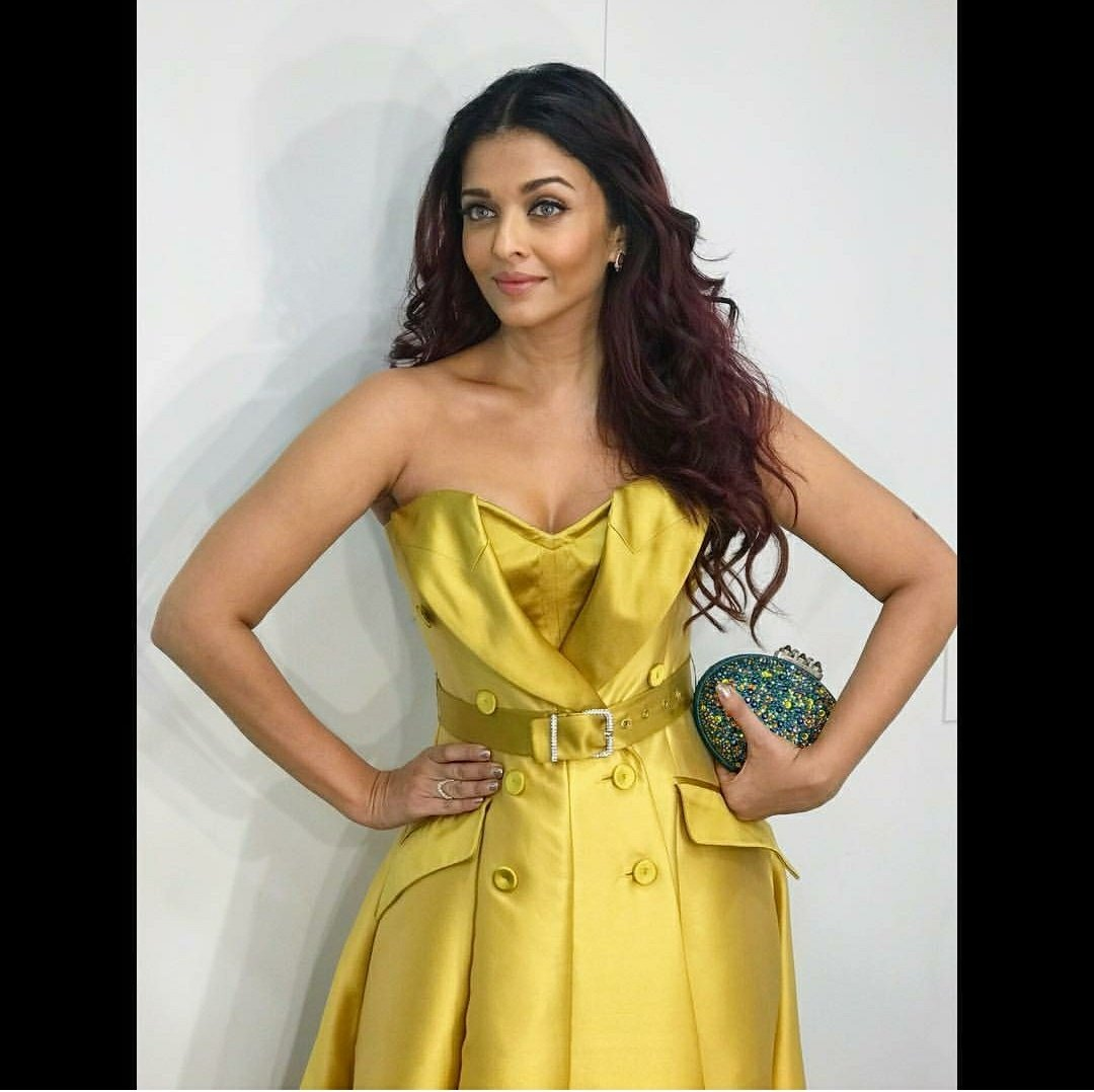 Aishwarya Rai Bachchan Looked Like A Million Bucks In Alexis Mabille Gown