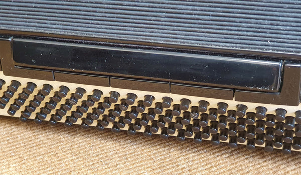 Parrot 120 bass 4 voice piano accordion with grill mutes