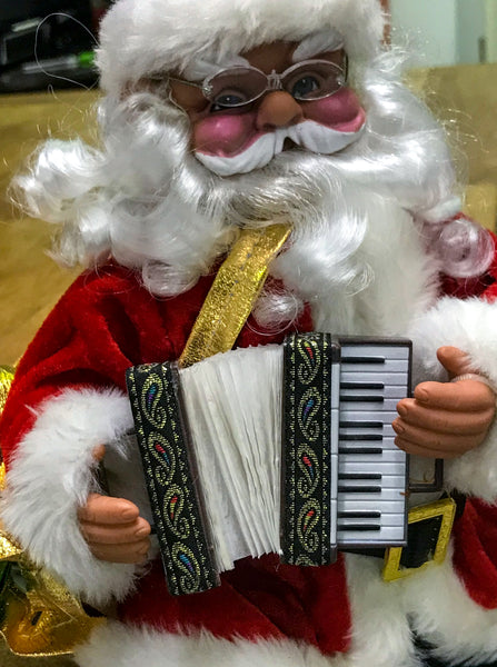 Santa plays the accordion! - TheReedLounge.com
