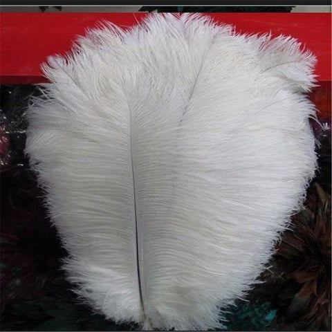 Ivory Ostrich Feathers Plumes