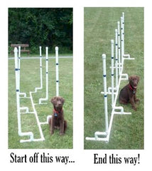 Affordable Agility Channel Weave Set, 6 poles