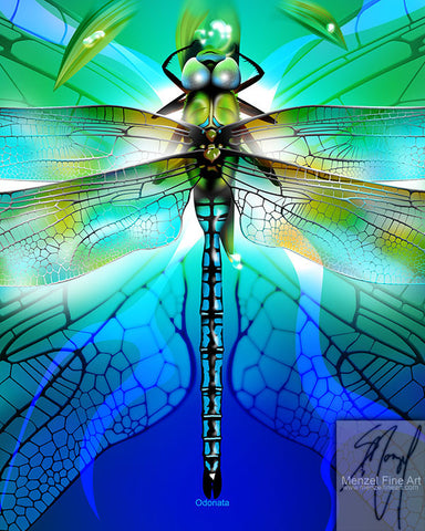"""Odonata"" - 16""x20"" Metallic Print Only"