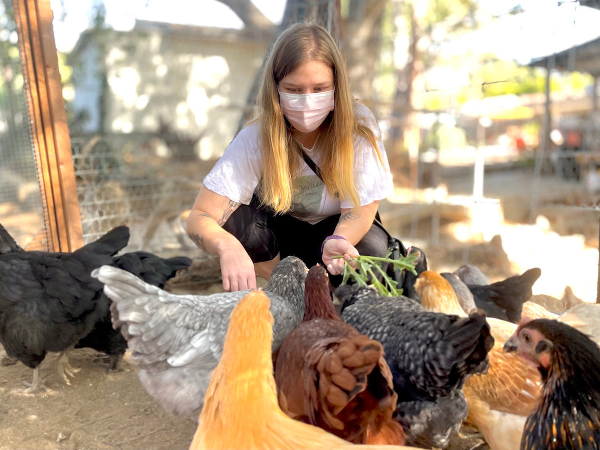 Ashley playing with the chickens