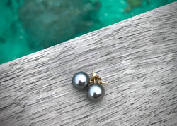 Tahitian Pearl Stud Earrings