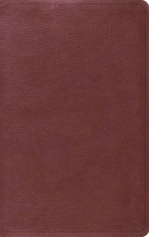 ESV Value Thinline Bible (Imitation Leather, TruTone, Burgundy)