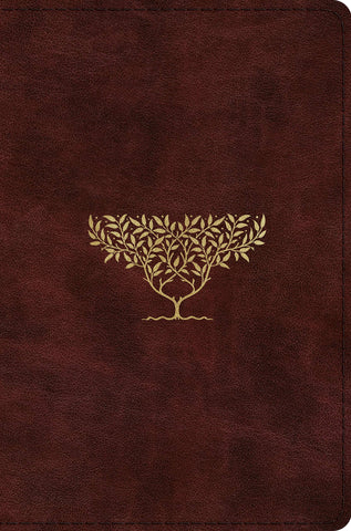 ESV Compact Bible (TruTone, Burgundy, Olive Tree Design)