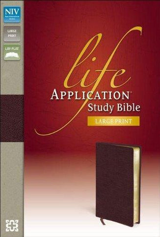 NIV Life Application Study Bible Large Print (Burgundy)