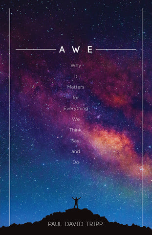 Awe - Why It Matters for Everything We Think, Say, and Do