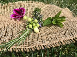 Solstice Aromatics - Aromatherapy and Wellness