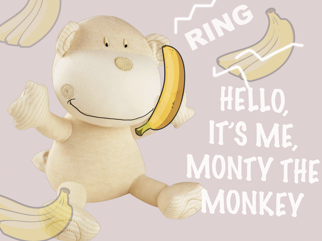 Introducing Monty the Monkey