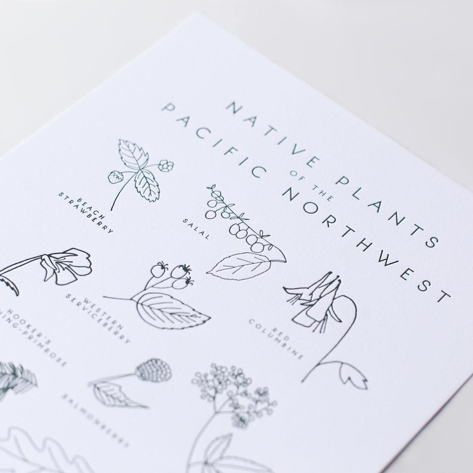 Native Plants of the Pacific Northwest Letterpress Print