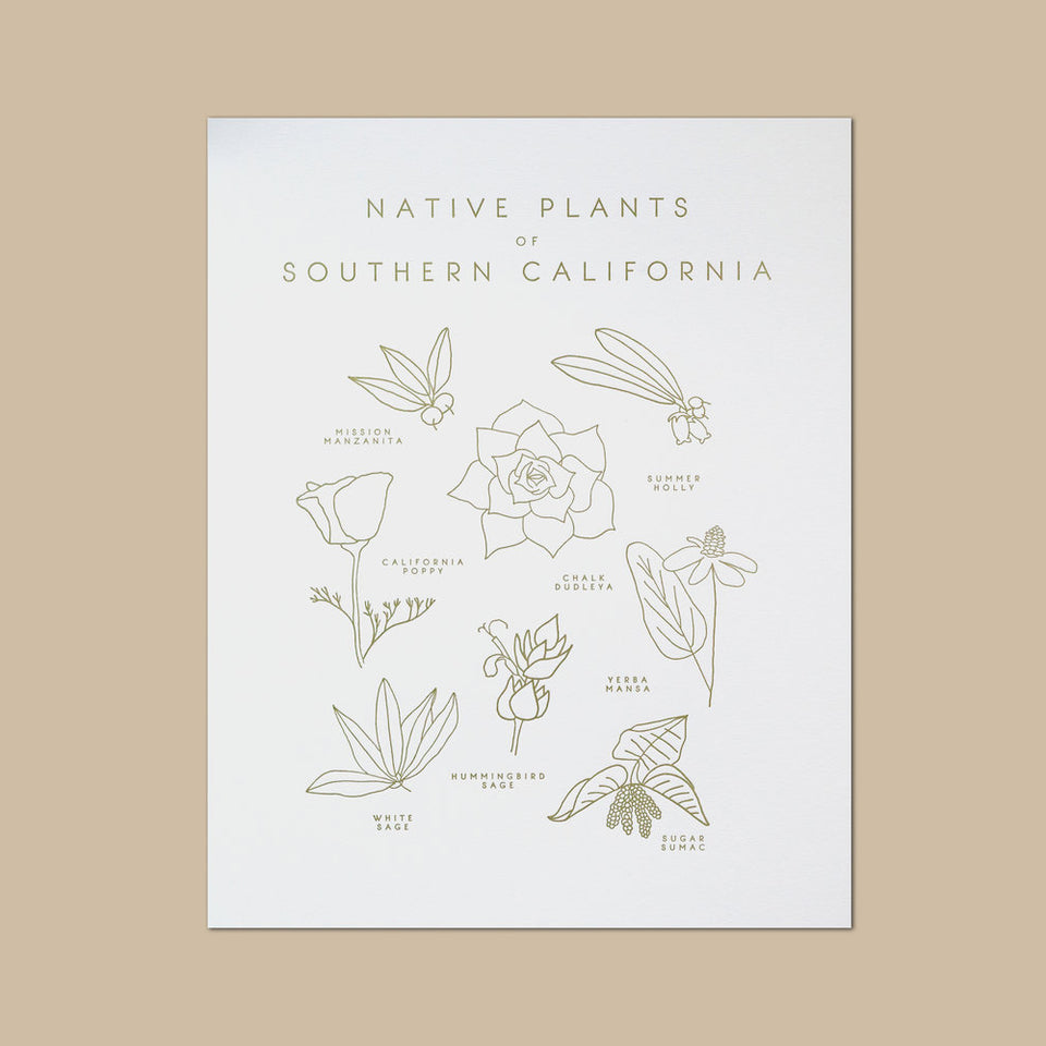 Native Plants of Southern California Letterpress Print