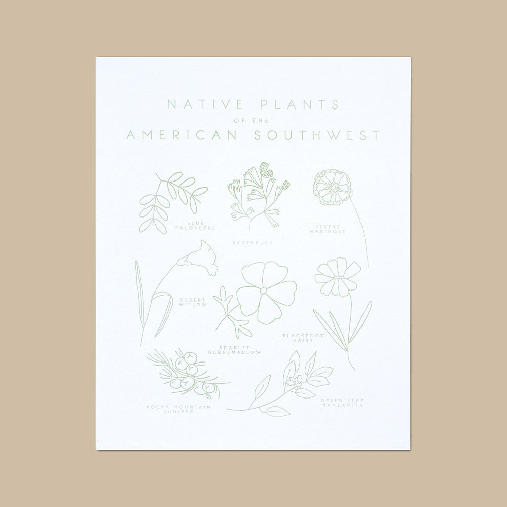 Native Plants Of The American Southwest Letterpress Print Mouse