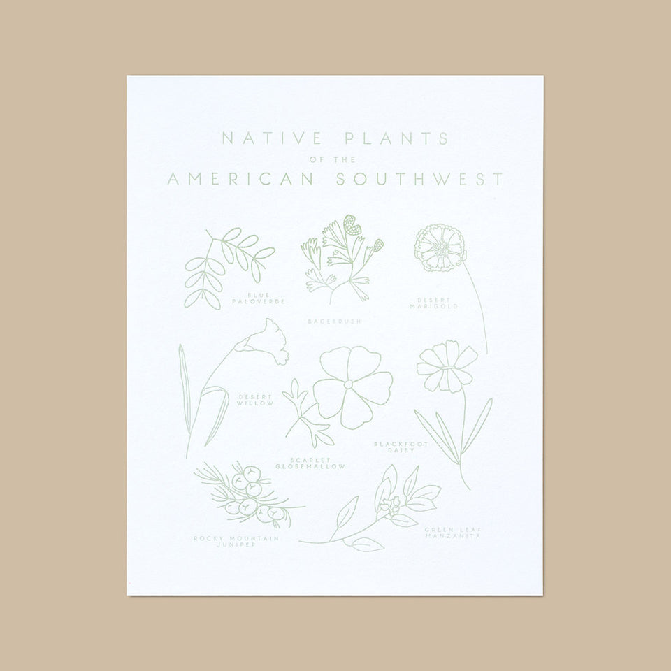 Native Plants of the American Southwest Letterpress Print