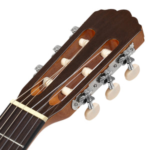 Donner 39 Inch Classical Guitar Spruce Mahogany Body DCG-1 Full Size Beginner Acoustic Classical Guitar Package