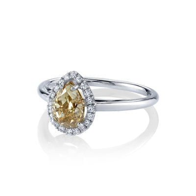 Champagne Pear Perfect Halo Ring