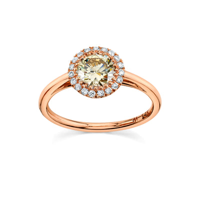 Champagne Round Perfect Halo Ring