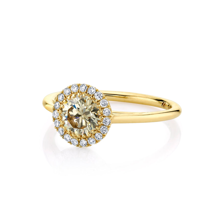 Champagne Round Perfect Halo Ring - Marrow Fine