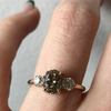 Champagne Diamond Three-Stone Engagement Ring - Marrow Fine