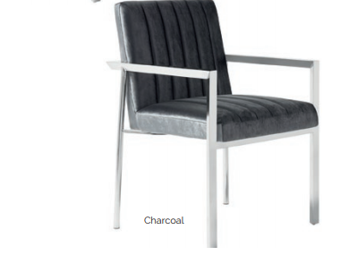 Eve Stainless Steel Chair - 2 Colours - ImagineX Furniture & Interiors