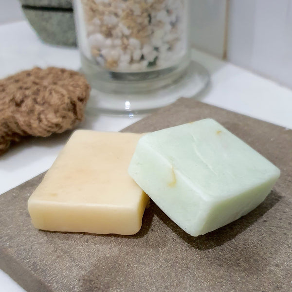 Travel Shampoo and Conditioner Bar Set