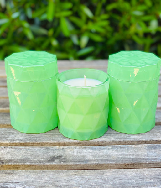 Tea lights 6 pack