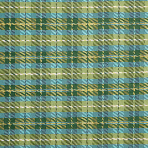 Highlander-Lime Indoor/Outdoor Upholstery Fabric