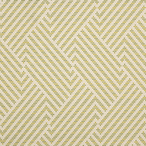 Navajo-Cactus Indoor/Outdoor Upholstery Fabric