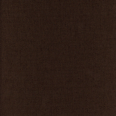 Notion-Chocolate Drapery Fabric