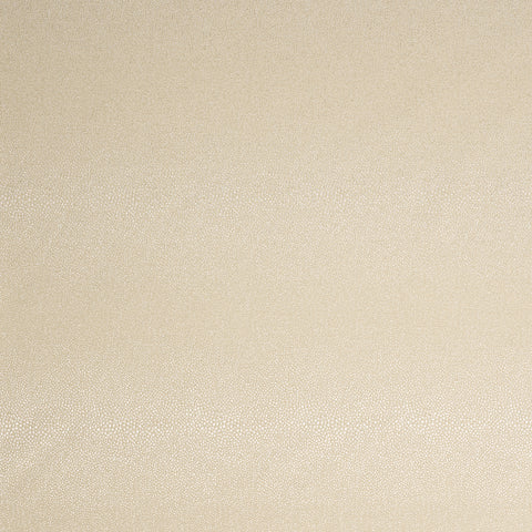 Pueblo-Ivory Indoor/Outdoor Upholstery Fabric