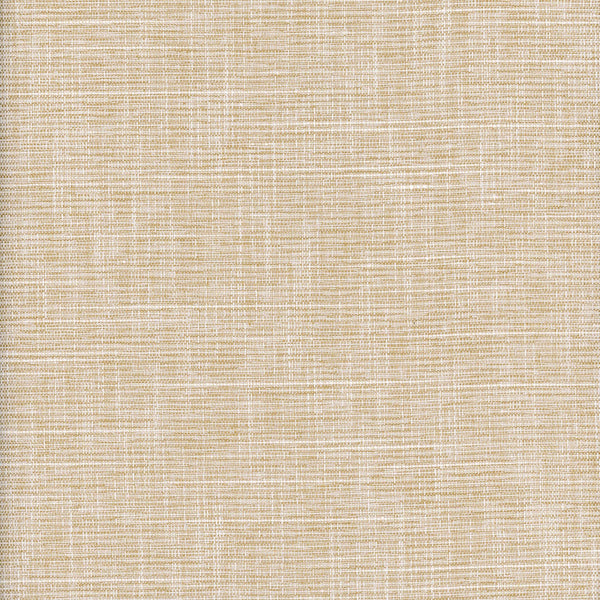 Resolve-Raffia Drapery Fabric