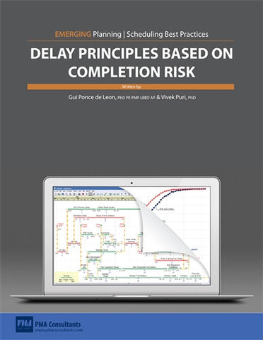 Delay Principles Based on Completion Risk Paper