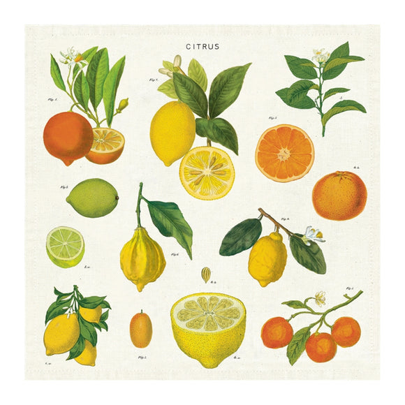Vintage Napkins (set of 4) - Citrus - MeMe Antenna
