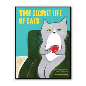 The Secret Life of Cats Correspondence Cards - MeMe Antenna