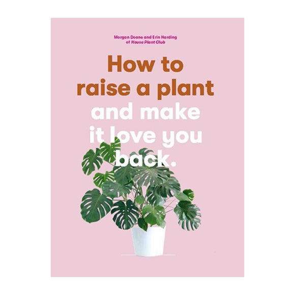 How to Raise a Plant and Make It Love You Back - MeMe Antenna