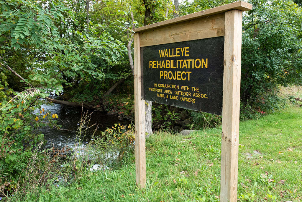 Walleye Rehabilitation Project Sign