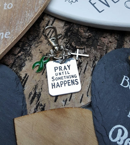 DG-3 Cerebral Palsy TBI Brain Injury Scoliosis Awareness Pray Until Something Happens Keychain