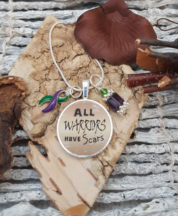 GP-5 Hemiplegic Migraine Awareness Necklace Lyme Disease Fibro All Warriors Have Scars Necklace
