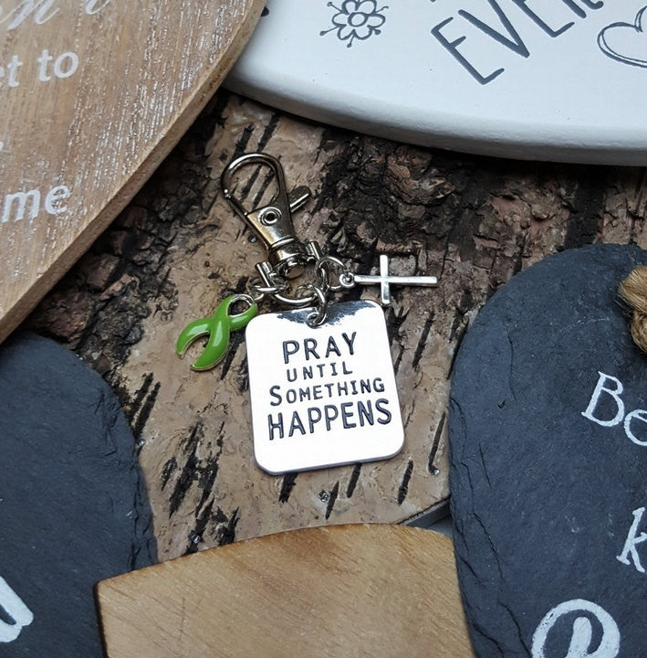 LG-3 Muscular Dystrophy Lymphoma Lyme Disease Awareness Pray Until Something Happens Keychain